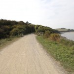 Camel_trail